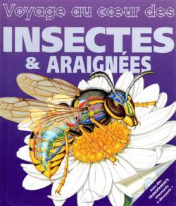 Voyage au coeur des insectes et araignees